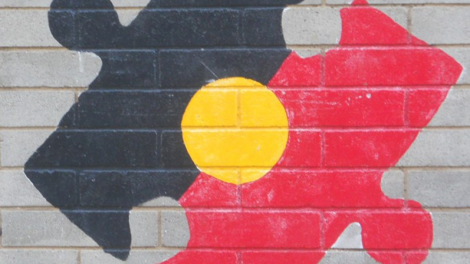 The AustKin website potential to help Indigenous communities regain lost knowledge of kinship systems. Image: Michael Coghlan, Flickr.