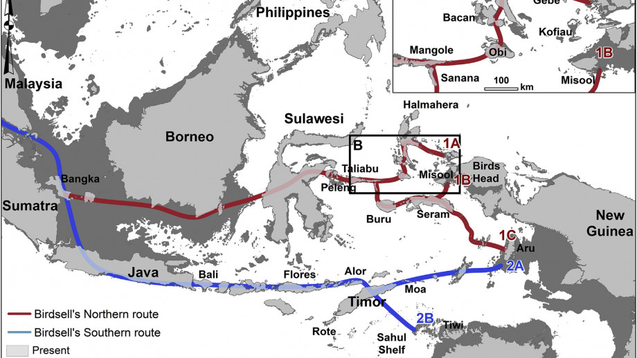 The two main possible routes of the first humans to reach Australia were identified in 1977. Image credit: Shimona Kealy et al.