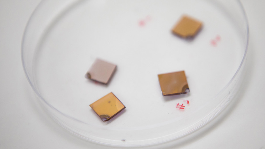 Optical sensors with a combination of very small gold nanostructures and semiconductors. Image credit: Lannon Harley, ANU