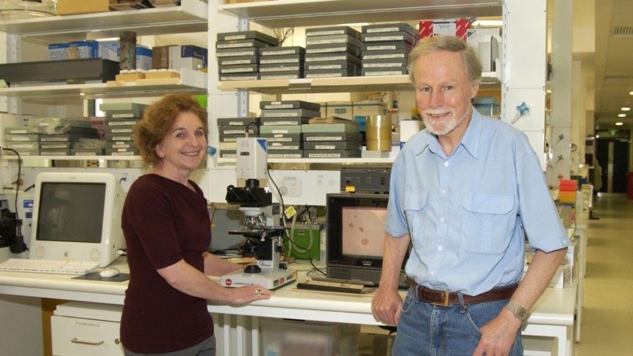 Dr Simeonovic and Prof Chris Parish