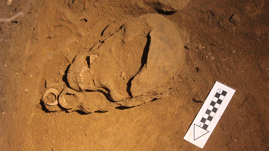 The skeletal remains and fish hooks found by Professor Sue O'Connor. Image: ANU.