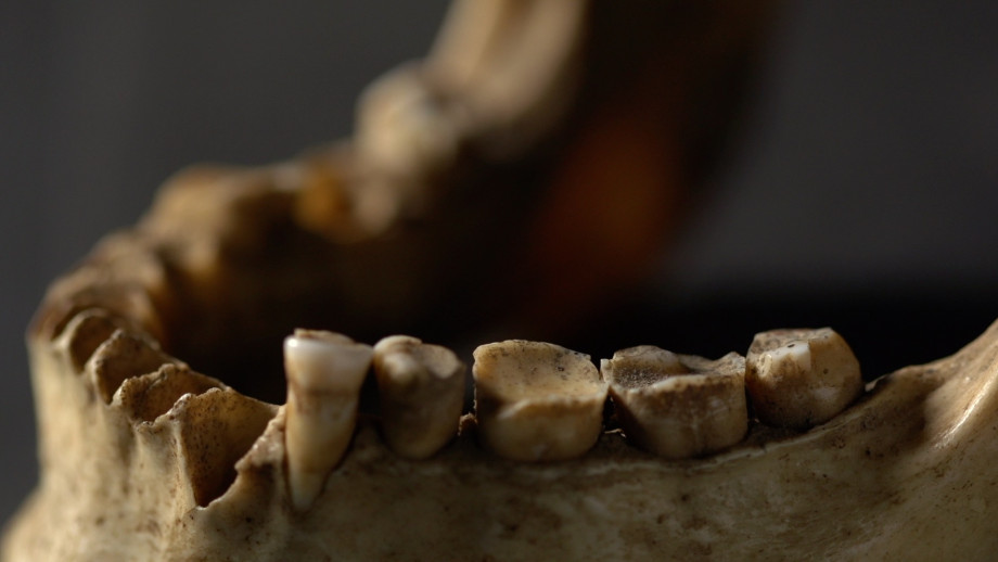 Christine Cave's resaerch examins the wear on teeth to determin how old someone was when they died. Image: Lannon Harley, ANU.