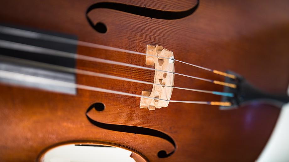 Violin. Photo by ANU photographer Stuart Hay.