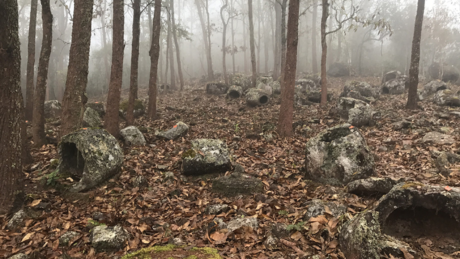 Megalithic jars in forest. Image: ANU