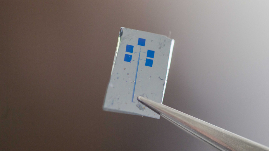 The semiconducting material, which cannot be seen with the naked eye, sits in between gold electrodes on the chip (pictured) that is a functional transistor. The chip can hold close to a thousand transistor circuits. Credit: Jack Fox, ANU