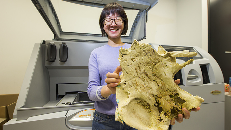 ANU PhD scholar Yuzhi Hu with a 3D print of the 400 million year old fish fossil that is six times the size of the specimen. Image: Stuart Hay, ANU
