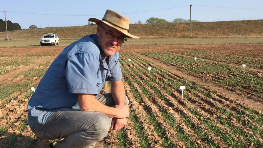 Image of Professor Barry Pogson in the field.