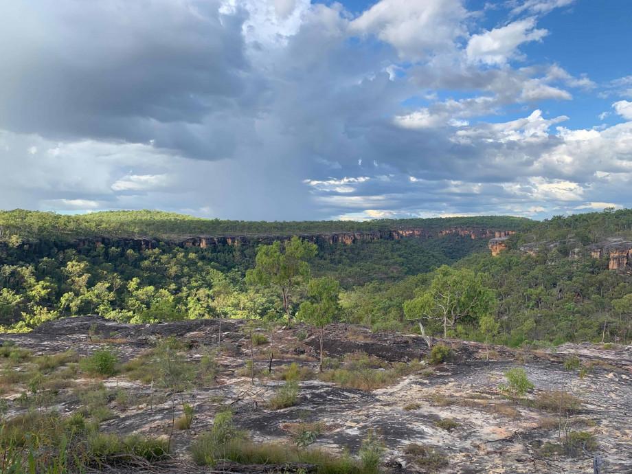 Image of Australian Landscape