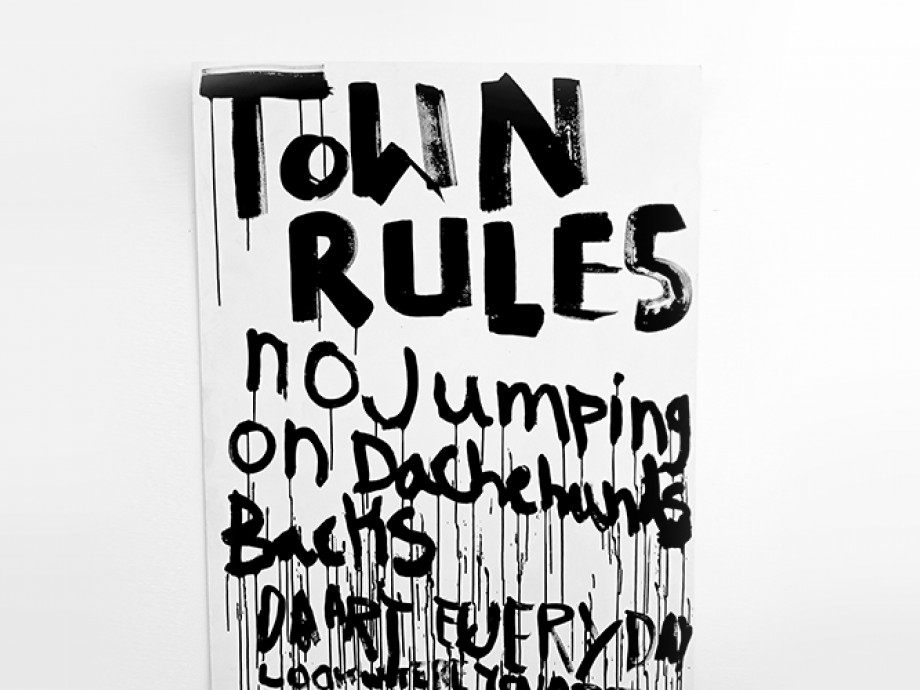 """Image of """"Town Rules"""" sign"""